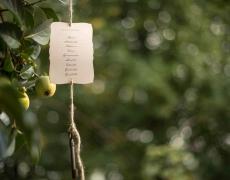 04-tableau-in-giardino