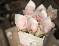 02-cono-petali-rosa